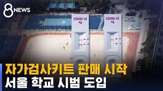 자가검사키트 판매 시작…서울 학교 시범 도입 / SBS