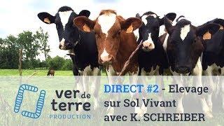DIRECT #2 - Productivité, rentabilité et carbone en élevage sur Sol Vivant avec K. SCHREIBER