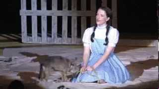 LHS The Wizard of Oz 2013 #1
