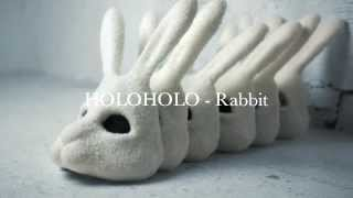 Rabbit - HoloHolo