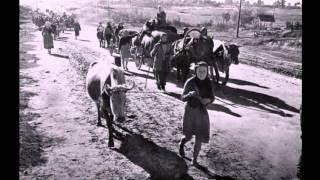 ВОЙНА 1944 год