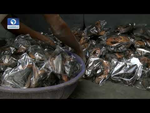 BoI Weekly: Focus On Ido-Ibadan Fish Farmers Cooperative Society Feed Mill Pt 3