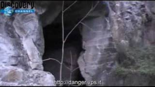 Danger and Beyond - Pipistrello Carnivoro