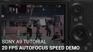 Sony a9 20fps Autofocus Speed Demonstration
