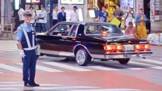 【渋谷】ローライダー, カスタムカーが渋谷に集結/Lowrider, Custom car arrived Shibuya Japan‼️
