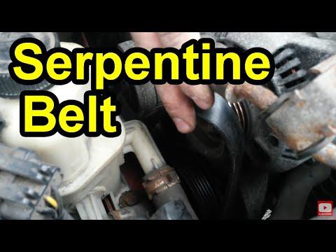 Serpentine belt escort zx2