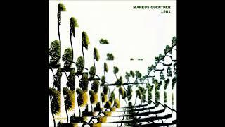 Markus Guentner - 1981 ( full album )