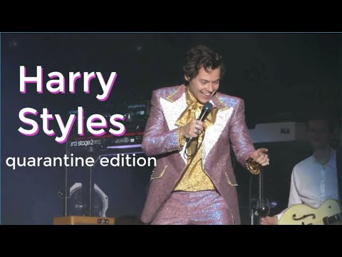 Harry Styles Clips That Help You Survive Quarantine