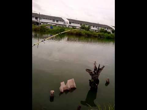 ตกปลาที่คลองสามปทุมธานี