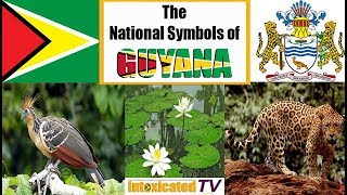 Famous Authors From Guyana
