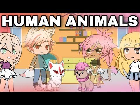HUMAN ANIMALS |