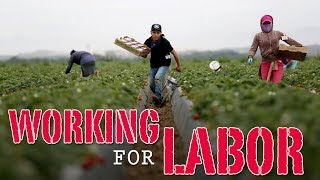 Working for Labor