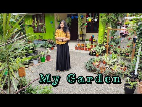 Garden Tour | My Garden
