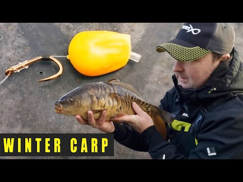 WINTER CARP FISHING - MOBILE STILLWATER BOMB FISHING