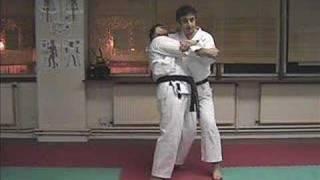 Heian Godan Karate Kata Bunkai