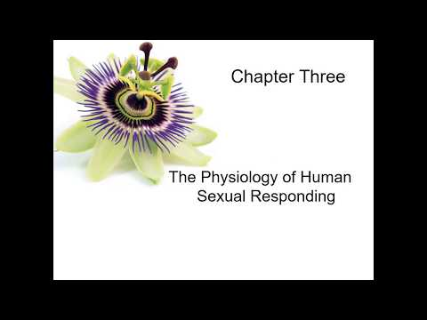 Human Sexuality Ch 3 Sexual Response Cycle