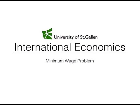 effect of minimum wage on different labor markets