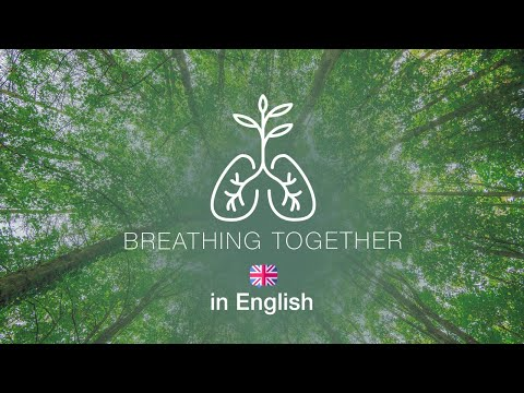 Breathing Together: A Global Ignatian Vigil Prayer for the Season of Creation