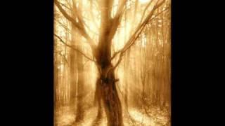 Radogost - Czego Szukam