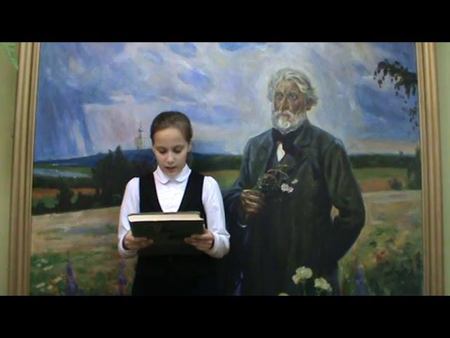 Изображение предпросмотра прочтения – АлинаАрутюнян читает произведение «Стихотворения в прозе. Воробей.» И.С.Тургенева