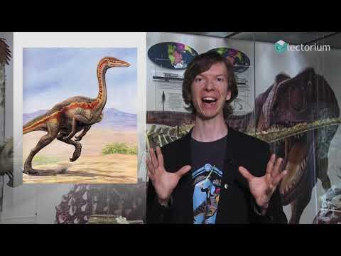 Как динозавр стал птицей? Рассказывает Ярослав Попов