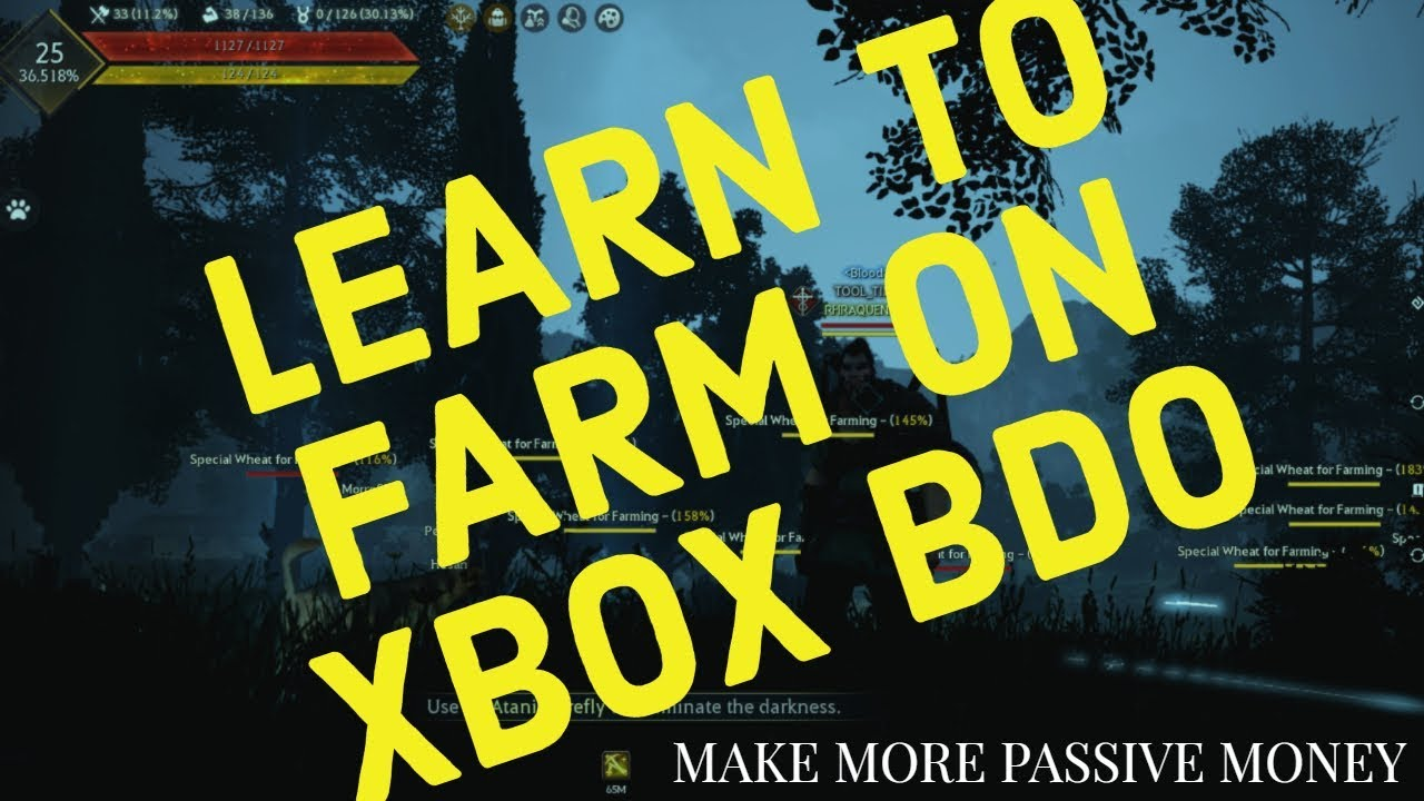 BDO XBOX FARMING GUIDE: MAKE MORE PASSIVE MONEY!