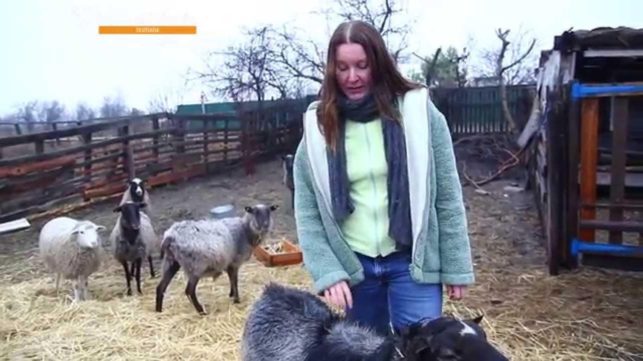Фермири козів відео фото 696-819