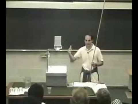 Juan Maldacena - Some thoughts on the wave function of the universe