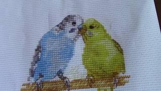 Готовая и оформленная работа от фирмы Алиса - Попугайчики