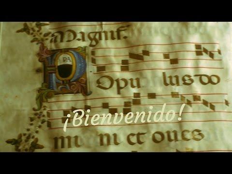 librería-anticuaria-el-camino-de-santiago,-cursos-y-servicios-de-tasación-de-libros