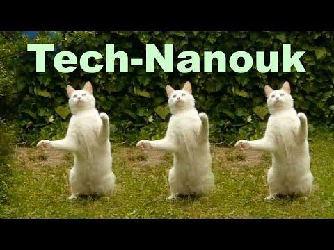 Le chat danse la Techno !!! : Tech-Nanouk...
