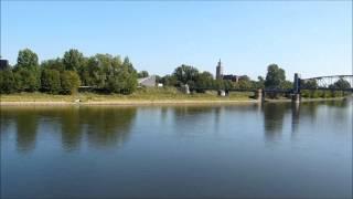 Domfelsen Magdeburg 2015 beim niedrigsten Wasserstand der Elbe seit 50 Jahren