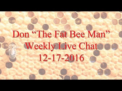 Fat Bee Man chat 12-17-2016
