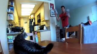Cat - Kurt Yaeger - Sons of Anarchy