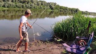 КАРАСИ как ЛАПТИ Фидерная оснастка на карася Рыбалка на Дону в Воронежской области