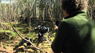 Bear Hijacks Camera  - The Bear Family and Me - BBC Two