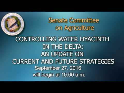 Senate Agriculture Committee Hearing