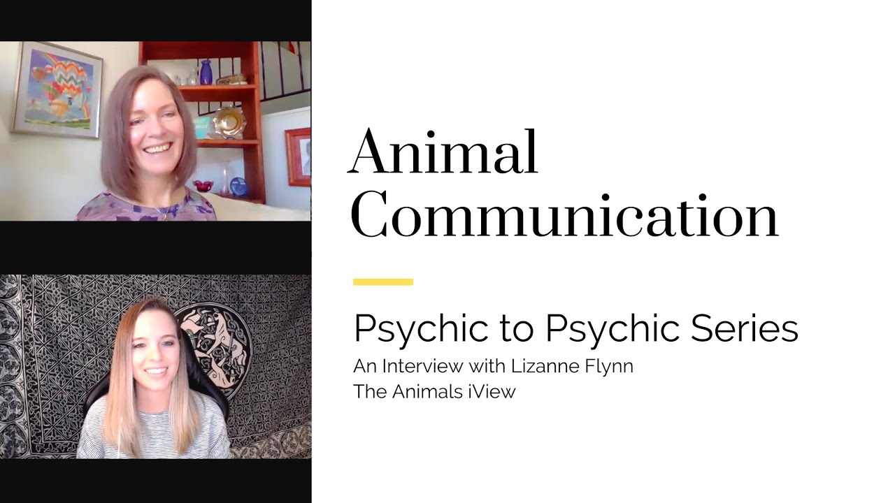 Psychic to Psychic: Animal Communication with Lizanne Flynn