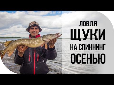 Отличная рыбалка на щуку. Джиг спиннинг осень Волга.