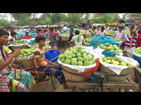 Deepto Krishi/দীপ্ত কৃষি -আম বাগান (ফলো-আপ)/চাঁপাইনবাবগঞ্জ, পর্ব ২৭৬