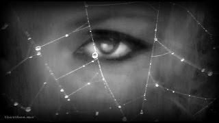 Thea - Goldfrapp (Totem Mix by Devious Corporation)