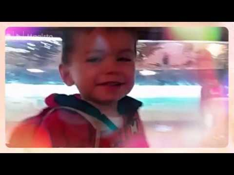 Zubie's Dry Dock- Family Friendly Fish Market