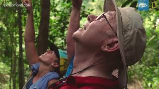 Coiba Howler Monkeys | Costa Rica & Panama | Lindblad Expeditions-National Geographic