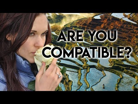 Incompatibility (A Harsh Reality in Relationships) - Teal Swan