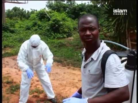 Africa This Week 5.11.15 - Sierra Leone declared Ebola-free