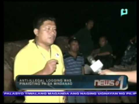 Anti-illegal logging mas pinaigting pa sa Mindanao