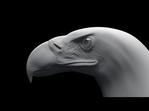 Eagle Sculpting TimeLapse Zbrush / Скульптинг орла в Zbrush
