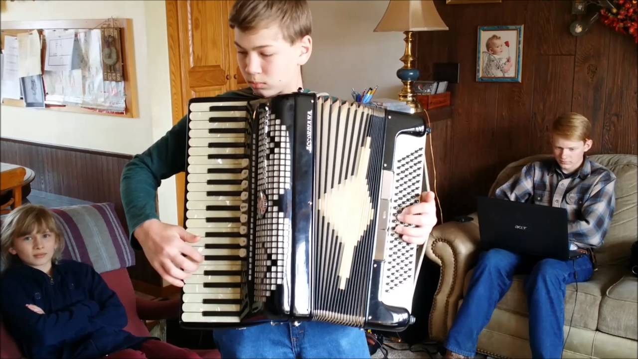 Excelsior 320N Accordion FOR SALE on Ebay
