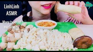 ASMR Eating a variety of mushrooms - Chicken thigh mushroom,Enoki Mushroom - LinhLinh ASMR  #48
