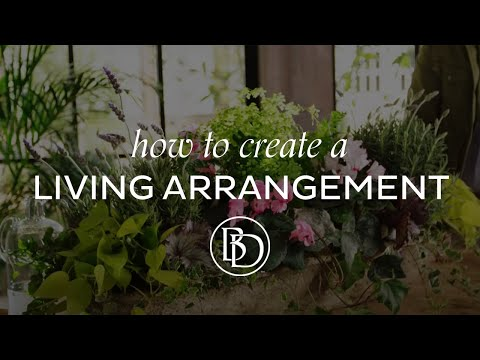 How to Create a Living Arrangement with Eddie Ross